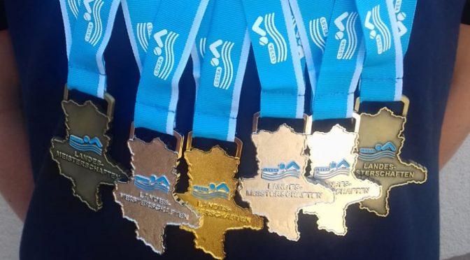 Felix Nitschke holt bei den 28. Offenen Landesmeisterschaften des Landes Sachsen-Anhalt im Schwimmen erstmals Gold